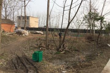 安徽亳州谷景力别墅工地直播