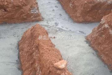 湖南湘潭齊新林別墅工地直播